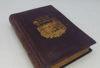 Путешествие по Замбези и ее притокам. 1867 год