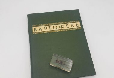 Овощи и картофель. ВСХВ. Подарочный альбом. 1940 год