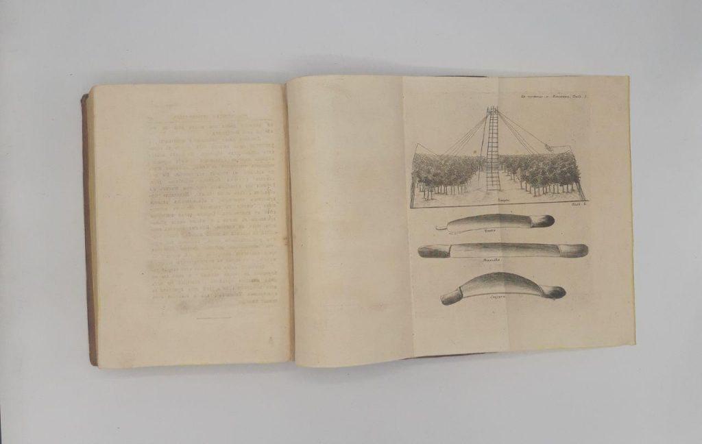 букинистика, библиографическая редкость, Лепехин
